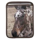 Appaloosa Stallions iPad Sleeve