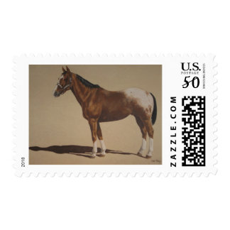 Appaloosa Standing Postage