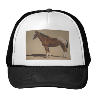 Appaloosa Standing Trucker Hat