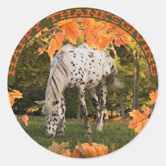 Appaloosa Thanksgiving Sticker