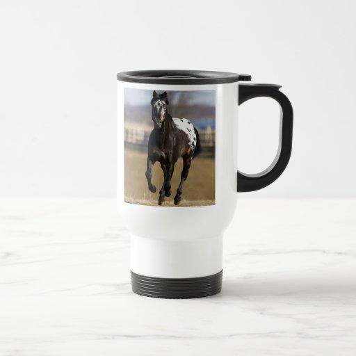 Appaloosa Travel Mug