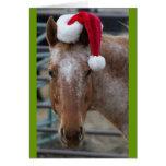 Appaloosa with Santa Hat Card