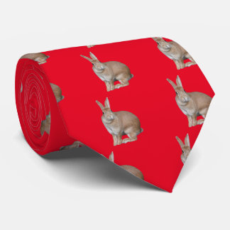 Apparel of rabbit neck tie