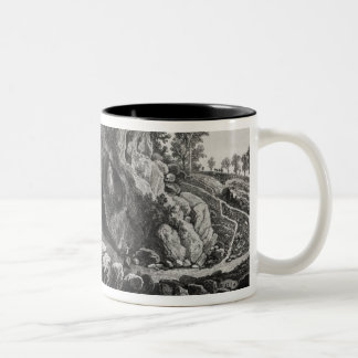 Apparition of the Virgin Mary Coffee Mugs