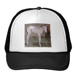 appbabe trucker hat