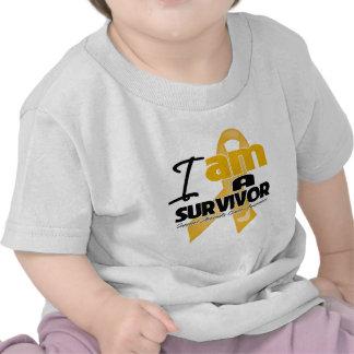 Appendix Cancer - I am a Survivor Tee Shirts