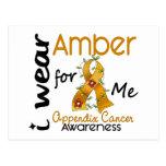 Appendix Cancer I Wear Amber For Me 43 Post Cards
