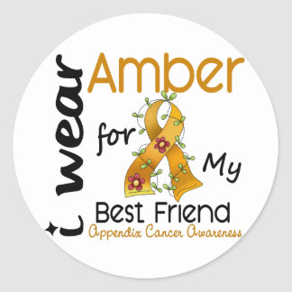 Appendix Cancer I Wear Amber For My Best Friend 43 Classic Round Sticker