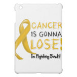 Appendix Cancer is Gonna Lose Cover For The iPad Mini