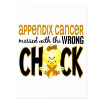 Appendix Cancer Messed With The Wrong Chick Postcard
