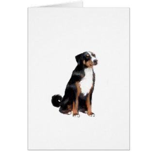 Appenzeller (a) - (aka perro del ganado de tarjeta de felicitación
