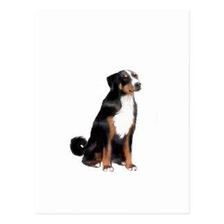 Appenzeller (a) - (aka perro del ganado de tarjeta postal