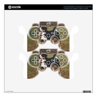 Appenzeller Sennenhund Dog Decal For PS3 Controller