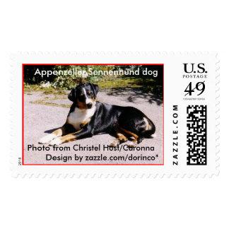 Appenzeller Sennenhund Postage