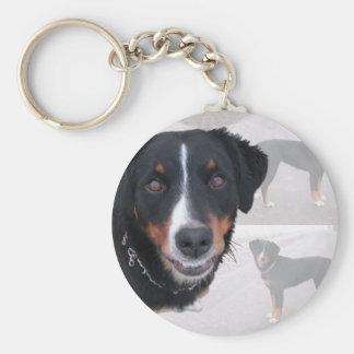 Appenzeller Sennenhund Schlüsselanhänger