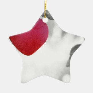apple-57-eop adorno navideño de cerámica en forma de estrella