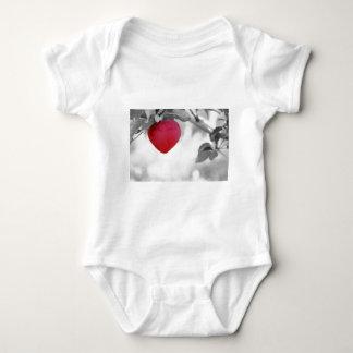 apple-57-eop body para bebé