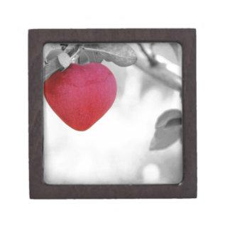 apple-57-eop caja de joyas de calidad