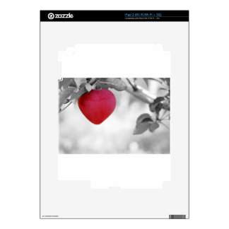 apple-57-eop iPad 2 skin