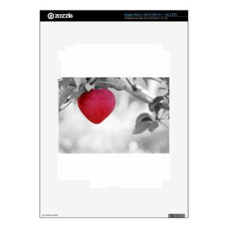 apple-57-eop pegatina skin para iPad 3