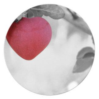 apple-57-eop plato