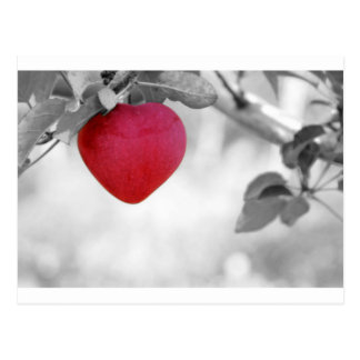 apple-57-eop postales