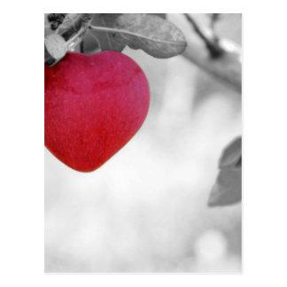 apple-57-eop tarjeta postal