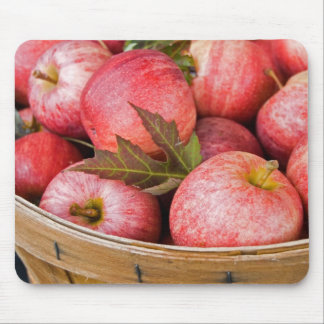 Apple-A-Day Mouse Pad
