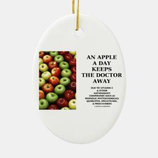 Apple al día guarda al doctor Away (el humor de la Adorno Ovalado De Cerámica