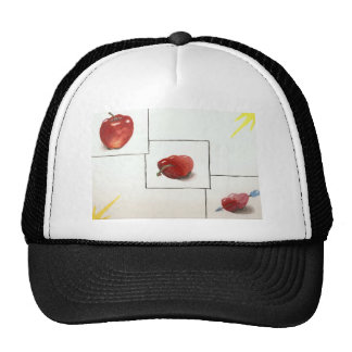 Apple and Hearts Transformation Hat