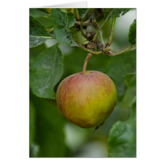 Apple any occasion greeting card