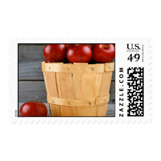 apple apples fruit food vine custom personalize postage