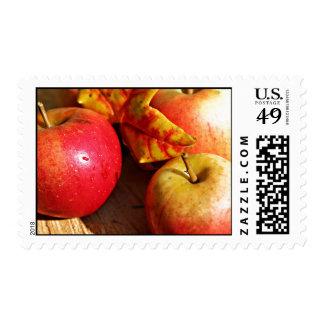 apple apples fruit food vine custom personalize postage stamps