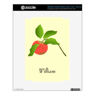 Apple Barnes and Noble Nook Skin