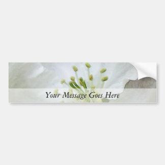 Apple blanco florece primer pegatina para auto