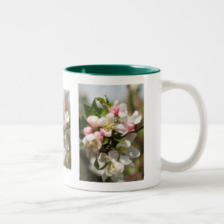 Apple blossom - a touch of spring Two-Tone coffee mug