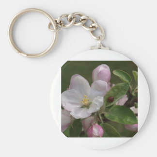 apple blossom and a lady bug basic round button keychain