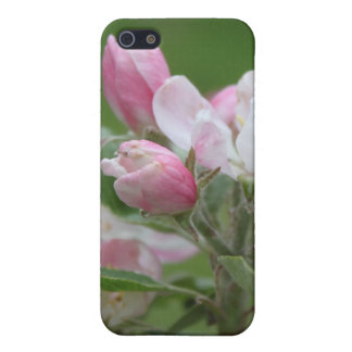 apple blossom and green leaves cover for iPhone SE/5/5s