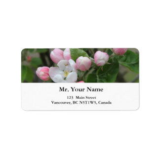 apple blossom and green leaves label