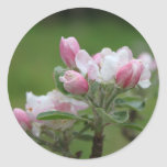 apple blossom and green leaves round stickers