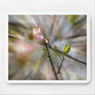 Apple Blossom Art Mouse Pad