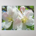 Apple Blossom Baby's Room Art Spring prints
