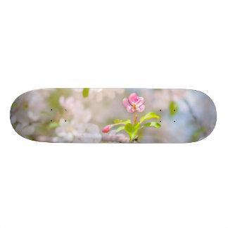 Apple blossom - Beauty Skateboard