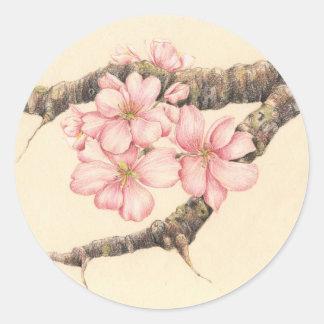 Apple Blossom Branch Pegatina Redonda