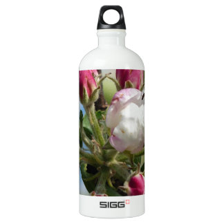 Apple Blossom Closeup Aluminum Water Bottle