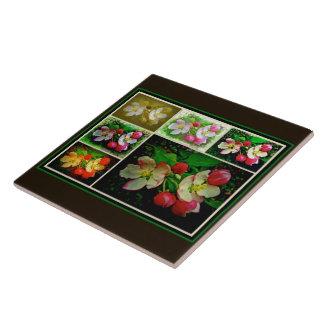 Apple Blossom Collage - Enhanced Digital Photo Tile