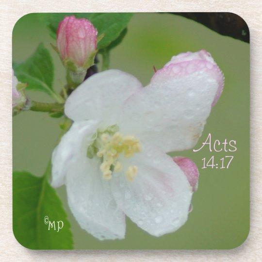 Apple Blossom Cork Coasters- customize Drink Coaster