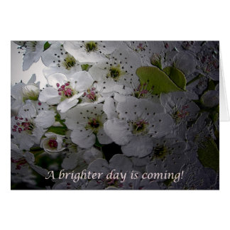 Apple Blossom Encouragement Cards