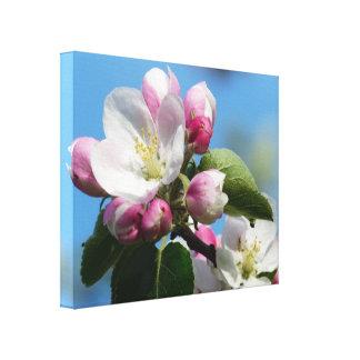 Apple Blossom Festival Nova Scotia Canada Canvas Print