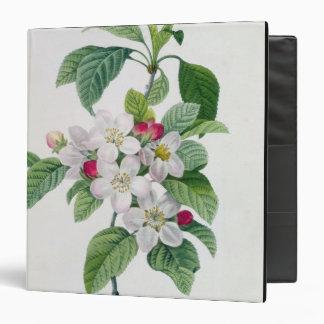 Apple Blossom, from 'Les Choix des Plus Belles Binder